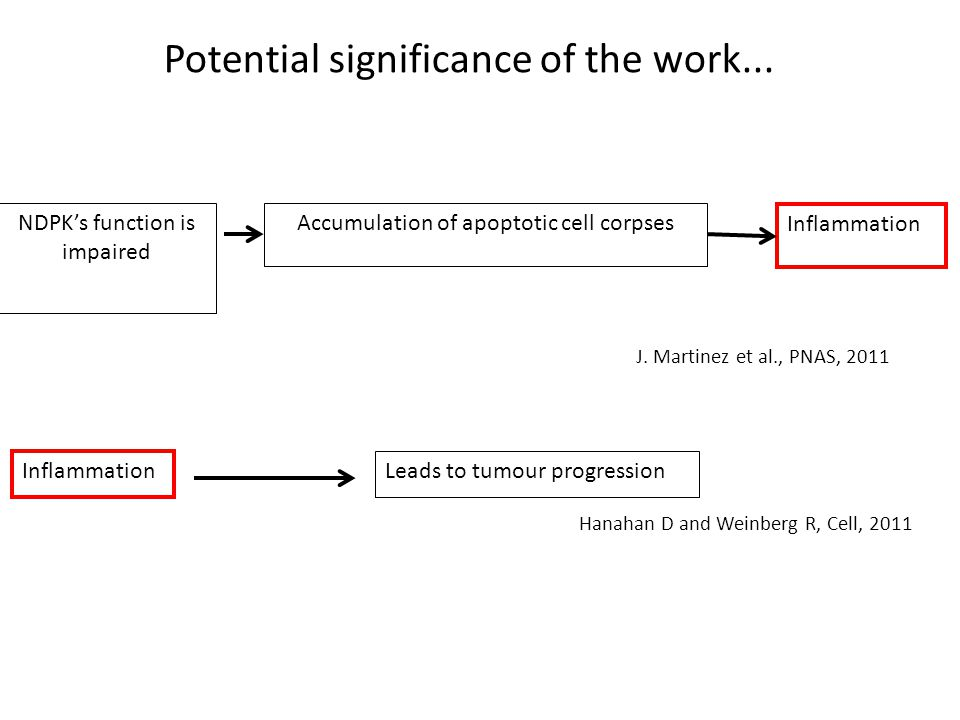 Potential significance of the work...