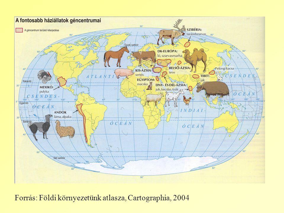 Forrás: Földi környezetünk atlasza, Cartographia, 2004