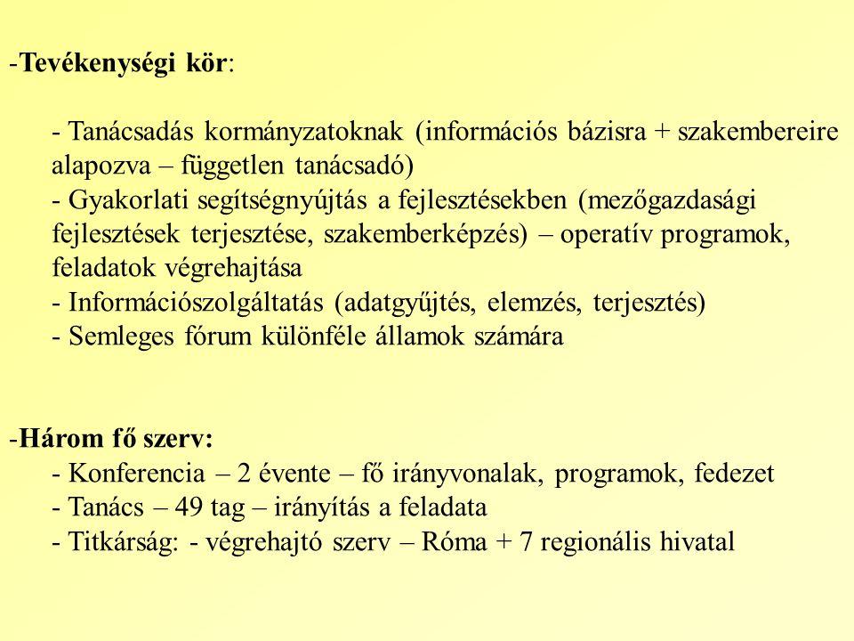 Tevékenységi kör: Tanácsadás kormányzatoknak (információs bázisra + szakembereire alapozva – független tanácsadó)