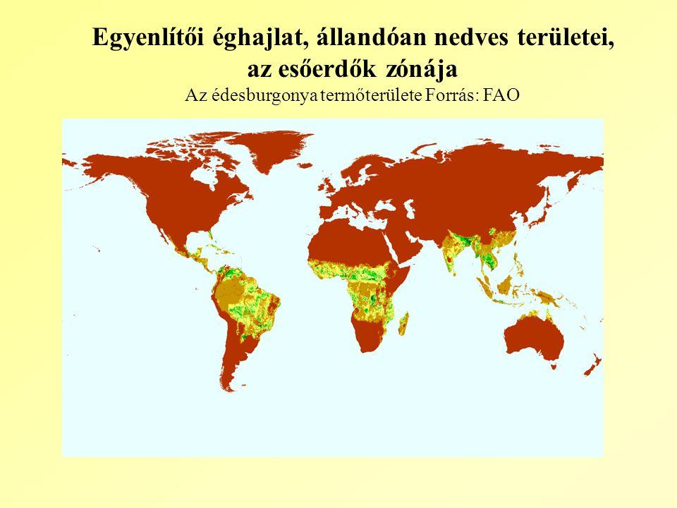 Egyenlítői éghajlat, állandóan nedves területei,