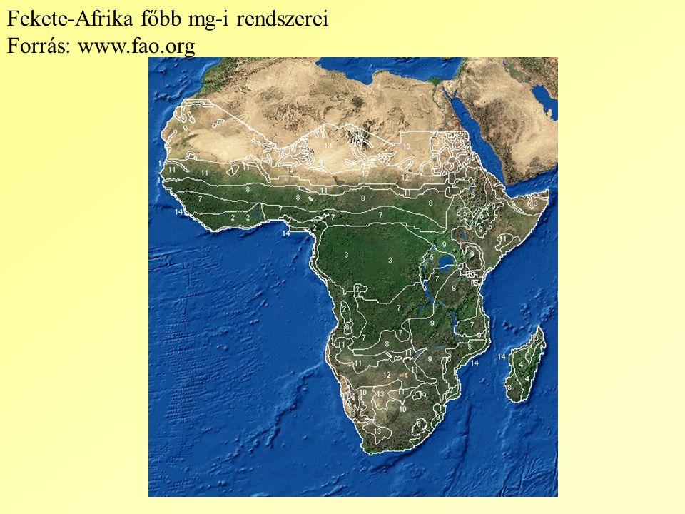 Fekete-Afrika főbb mg-i rendszerei