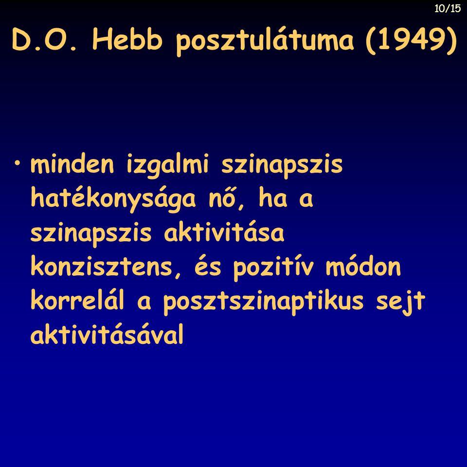 D.O. Hebb posztulátuma (1949)