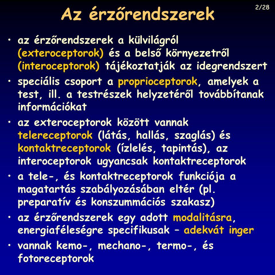 Az érzőrendszerek 2/28. az érzőrendszerek a külvilágról (exteroceptorok) és a belső környezetről (interoceptorok) tájékoztatják az idegrendszert.
