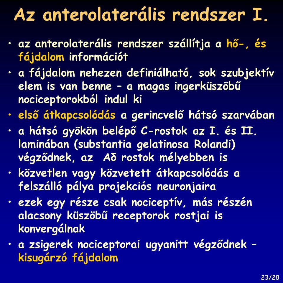 Az anterolaterális rendszer I.