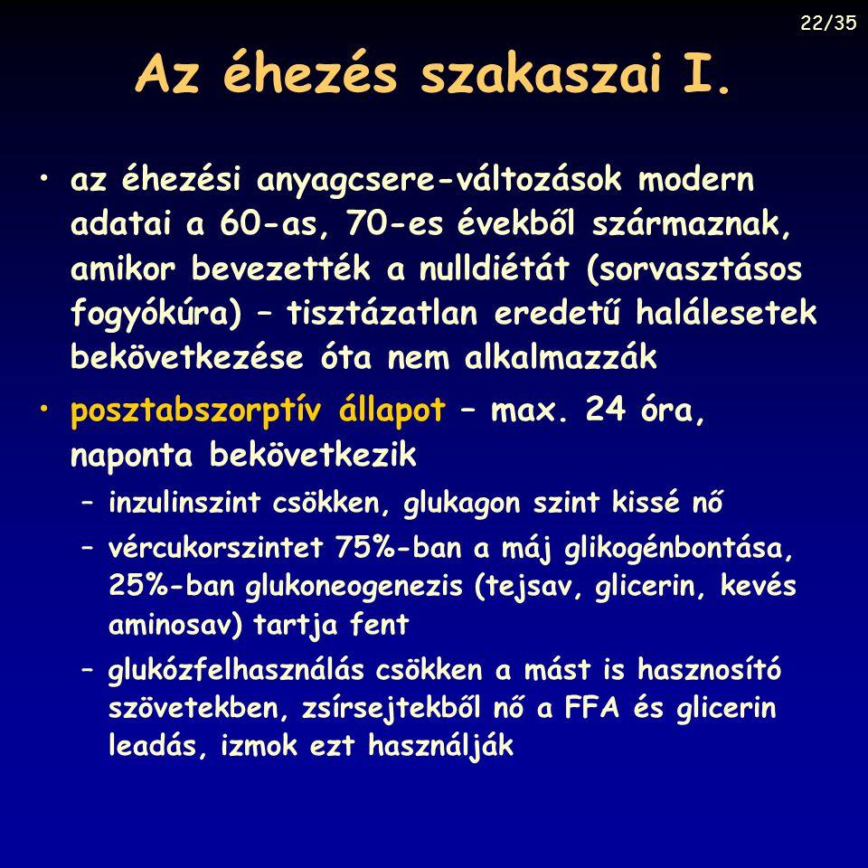 22/35 Az éhezés szakaszai I.