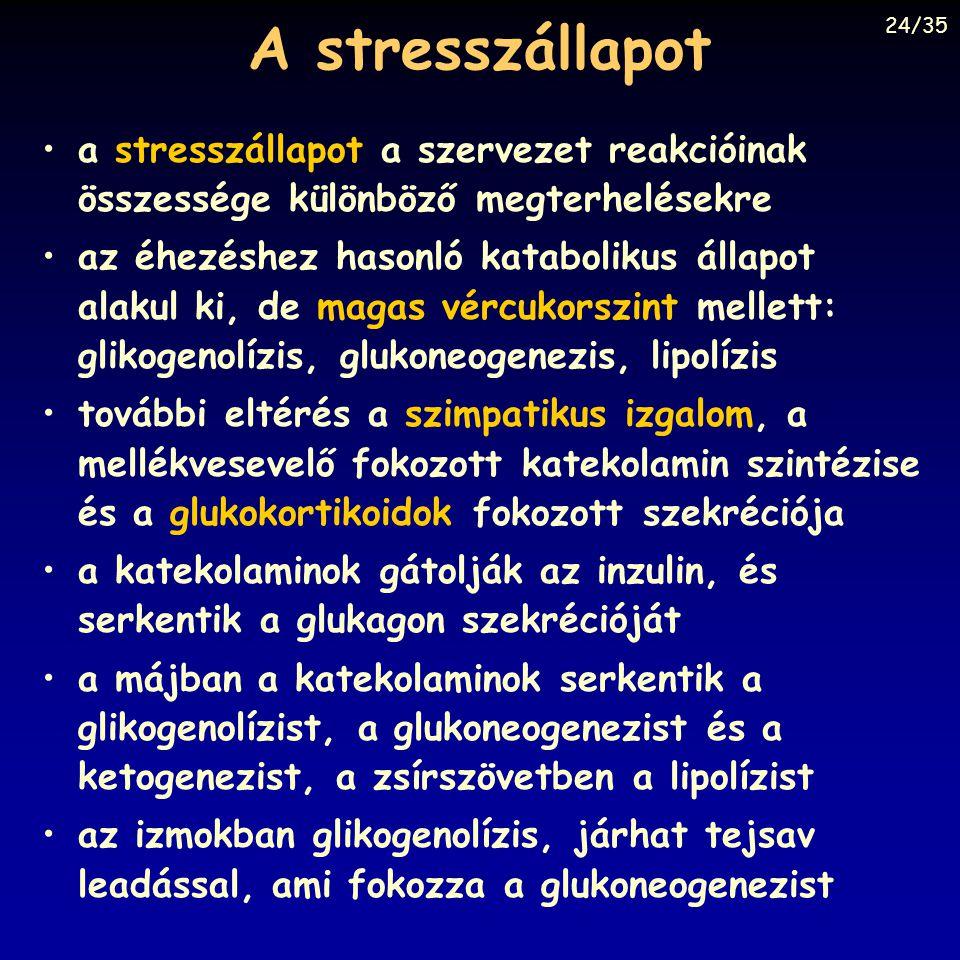 A stresszállapot 24/35. a stresszállapot a szervezet reakcióinak összessége különböző megterhelésekre.