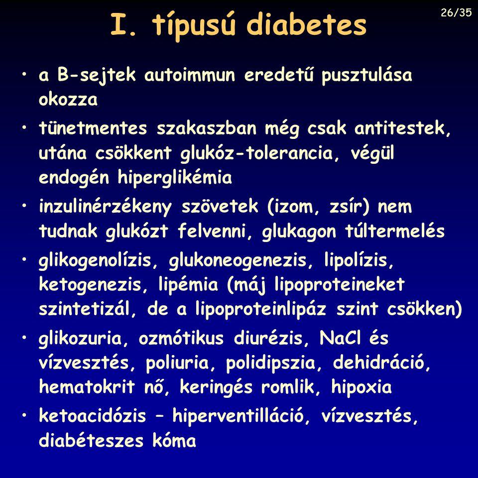 I. típusú diabetes a B-sejtek autoimmun eredetű pusztulása okozza