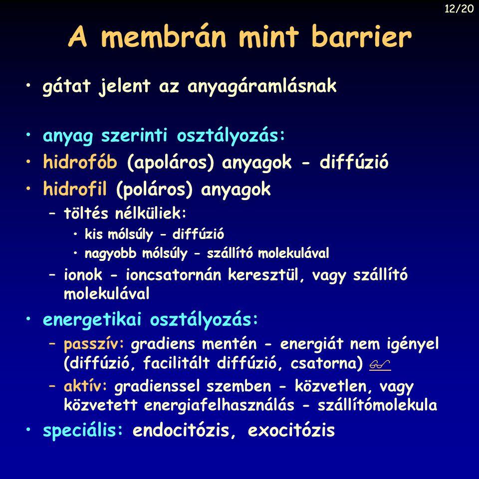 A membrán mint barrier gátat jelent az anyagáramlásnak