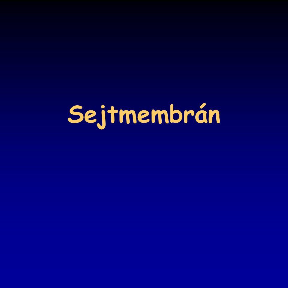 Sejtmembrán