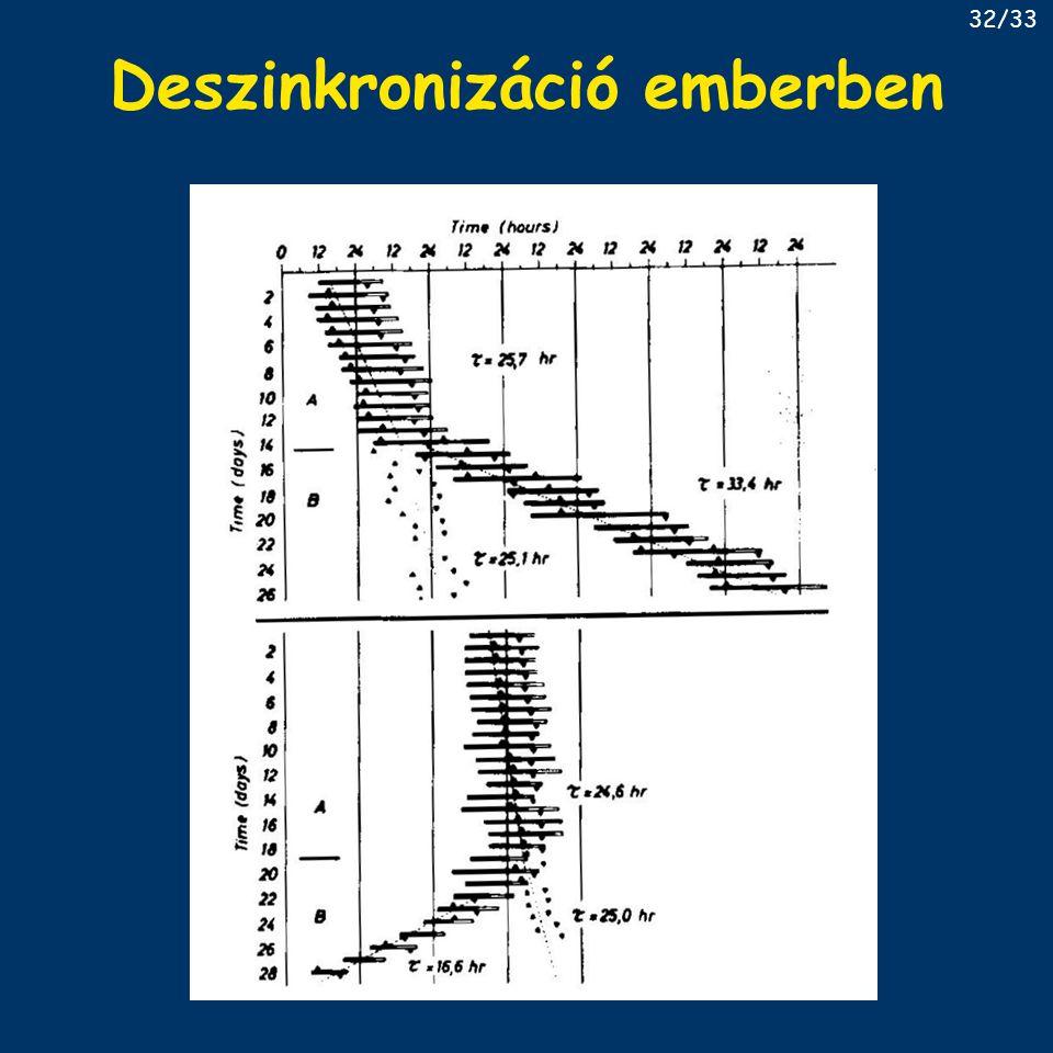 Deszinkronizáció emberben