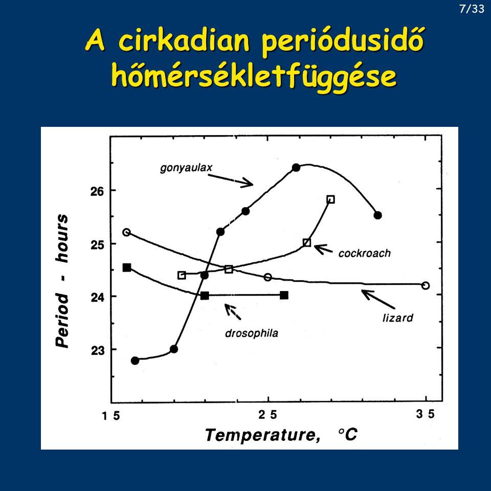 A cirkadian periódusidő hőmérsékletfüggése
