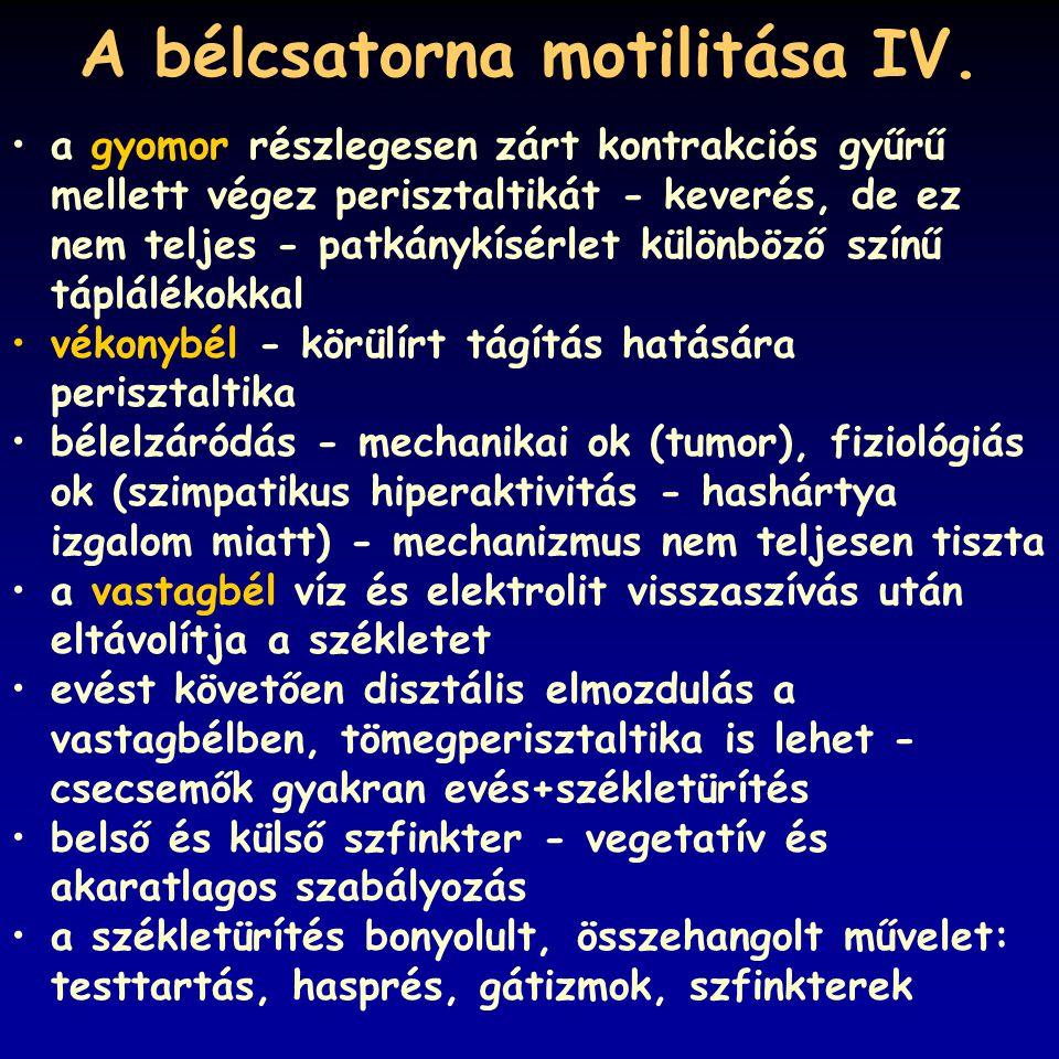 A bélcsatorna motilitása IV.