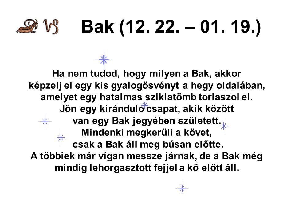 Bak (12. 22. – 01. 19.) Ha nem tudod, hogy milyen a Bak, akkor