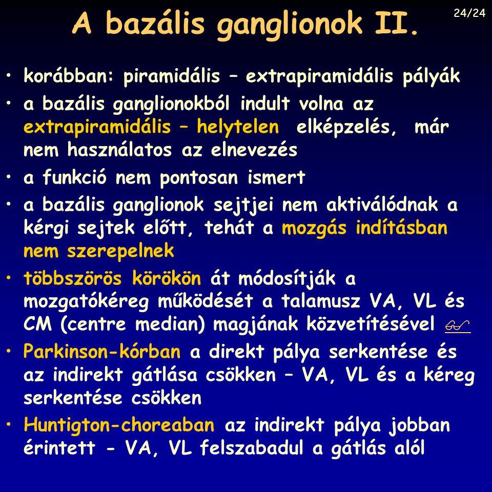 A bazális ganglionok II.
