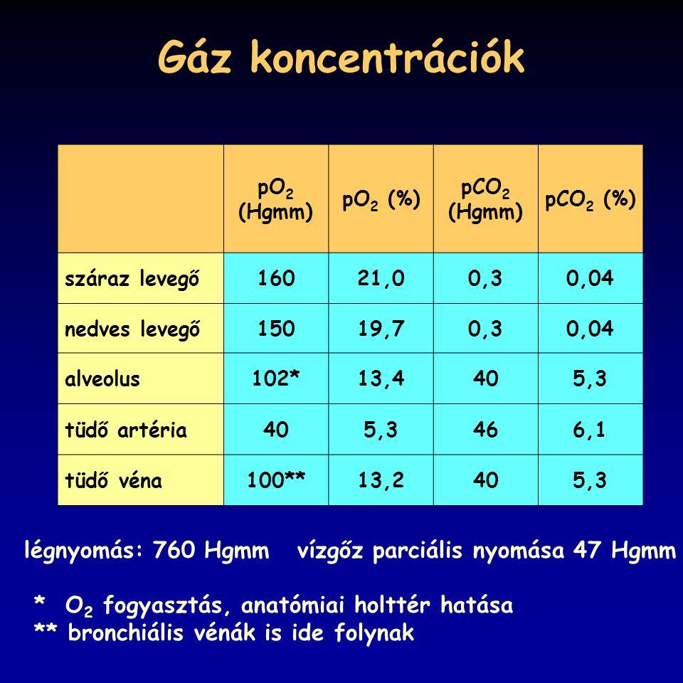 Gáz koncentrációk légnyomás: 760 Hgmm vízgőz parciális nyomása 47 Hgmm