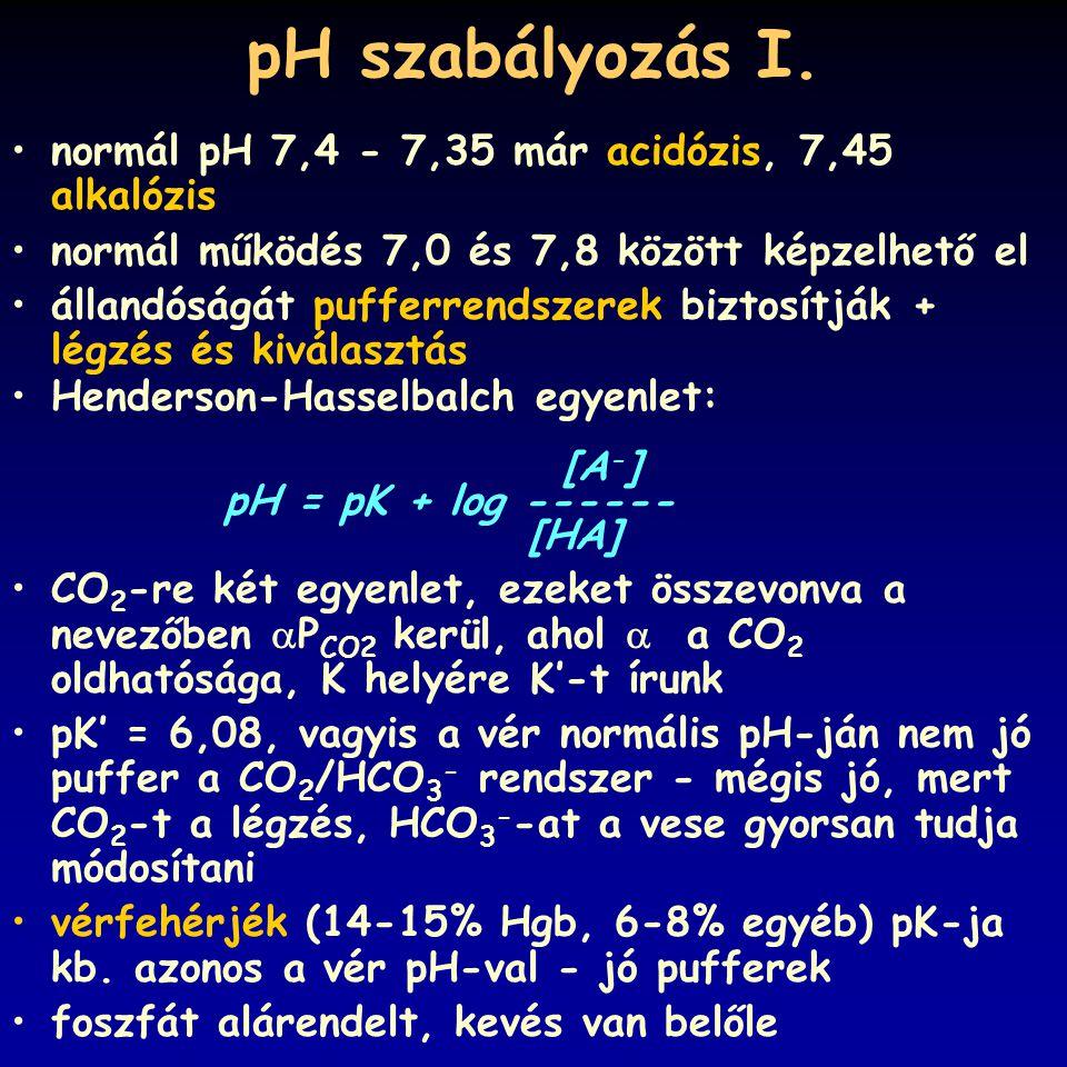 pH szabályozás I. normál pH 7,4 - 7,35 már acidózis, 7,45 alkalózis