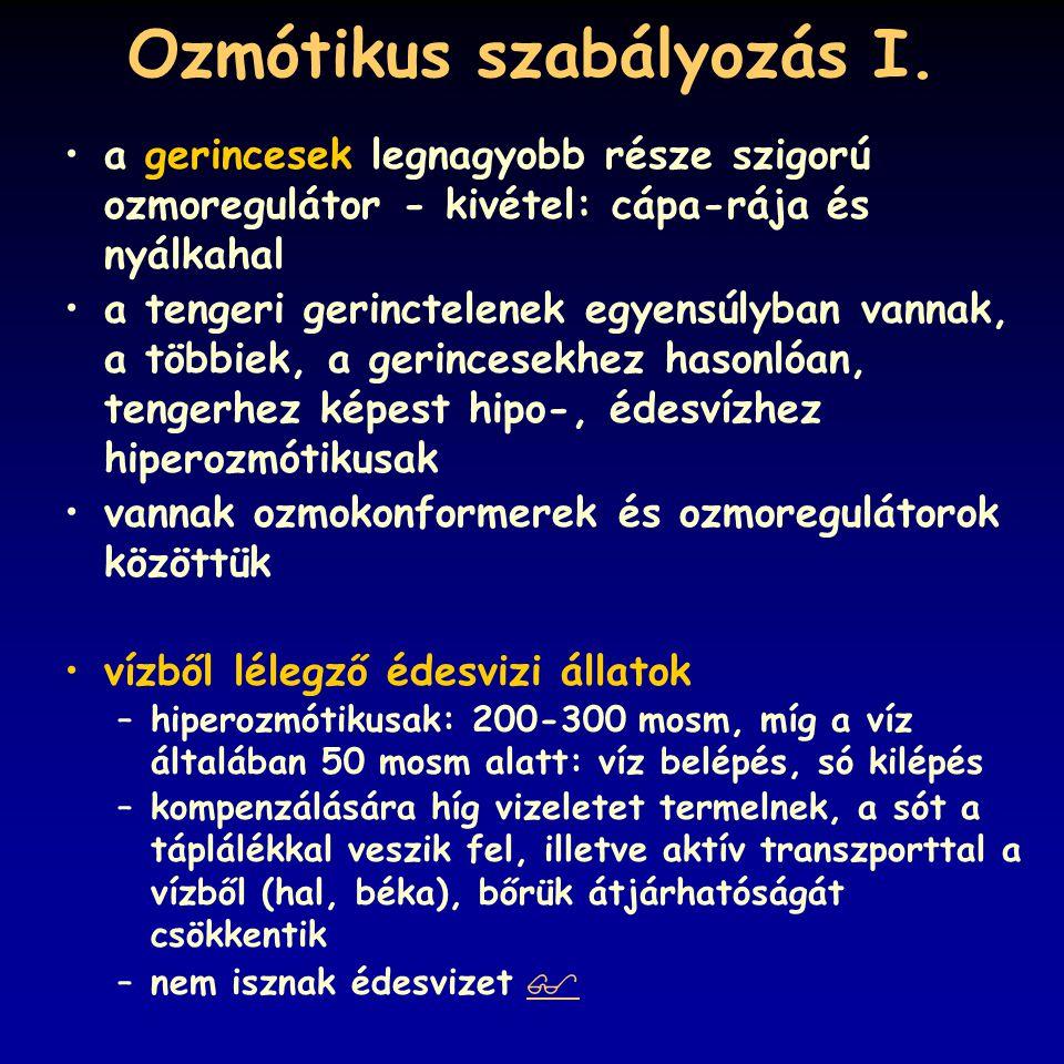Ozmótikus szabályozás I.