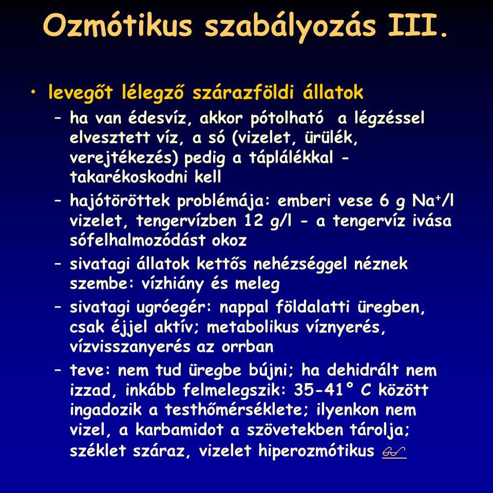 Ozmótikus szabályozás III.