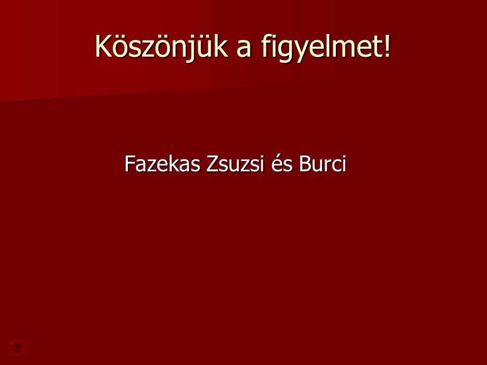 Köszönjük a figyelmet! Fazekas Zsuzsi és Burci