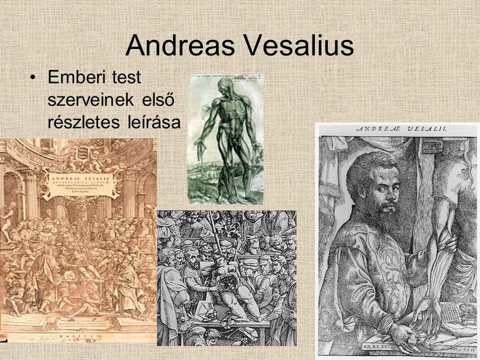 Andreas Vesalius Emberi test szerveinek első részletes leírása