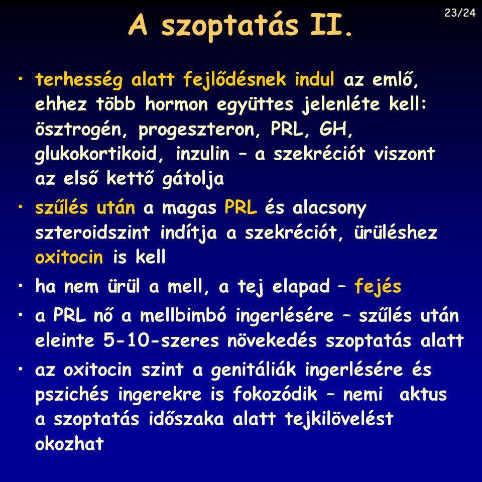 A szoptatás II. 23/24.