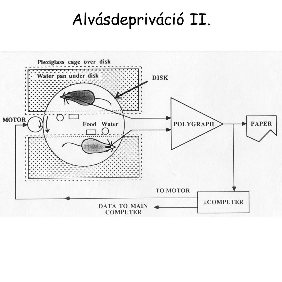 Alvásdepriváció II.