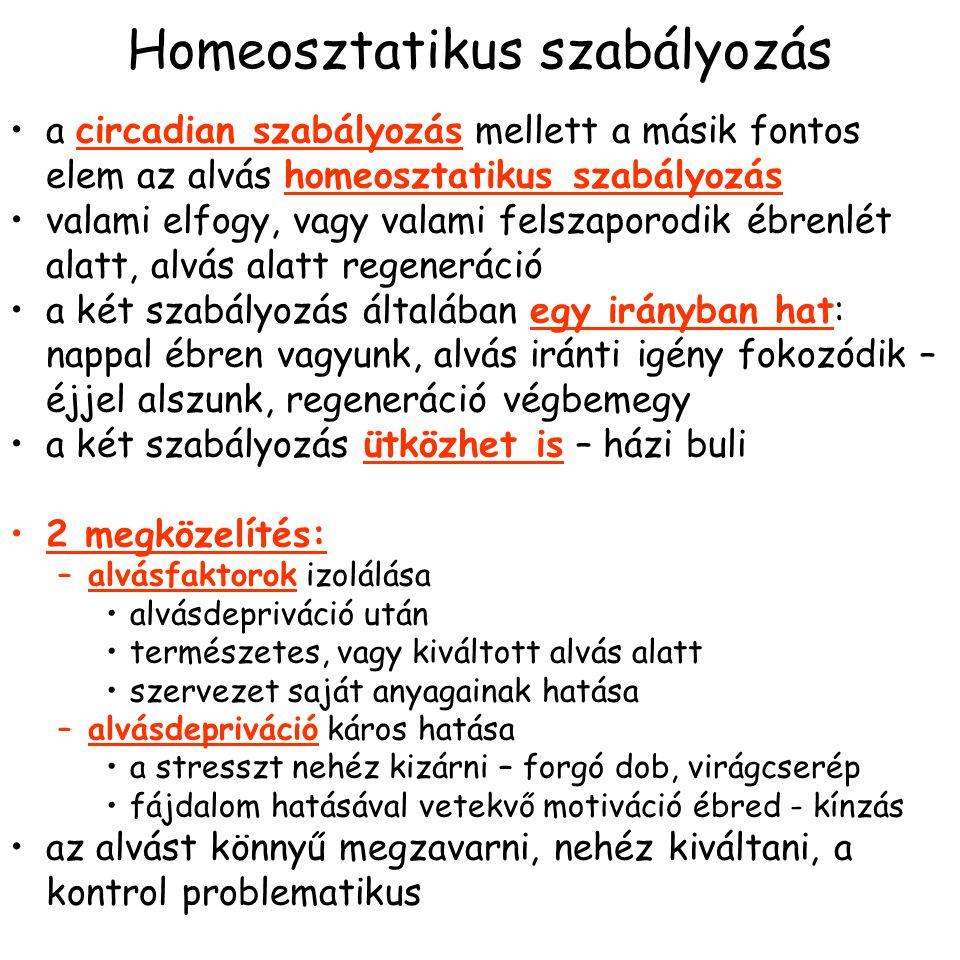 Homeosztatikus szabályozás