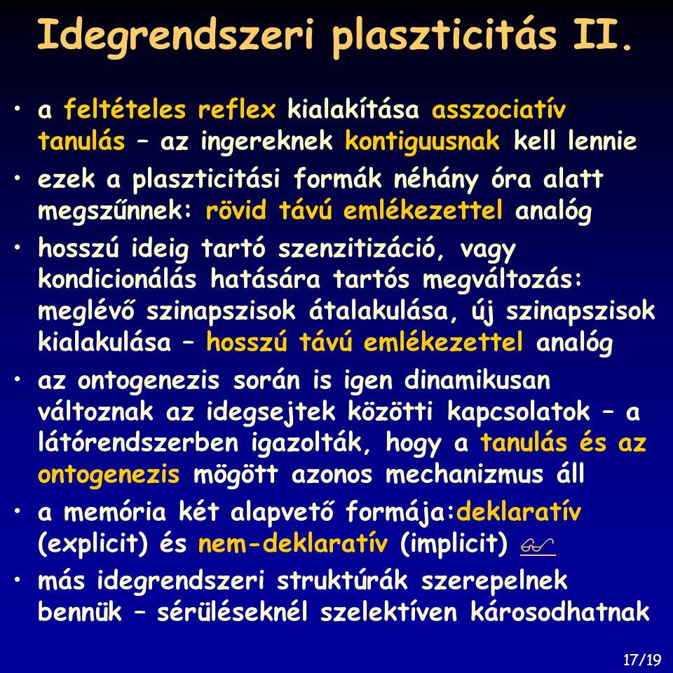 Idegrendszeri plaszticitás II.
