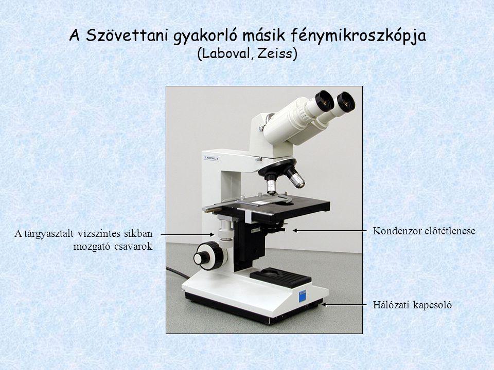 A Szövettani gyakorló másik fénymikroszkópja (Laboval, Zeiss)
