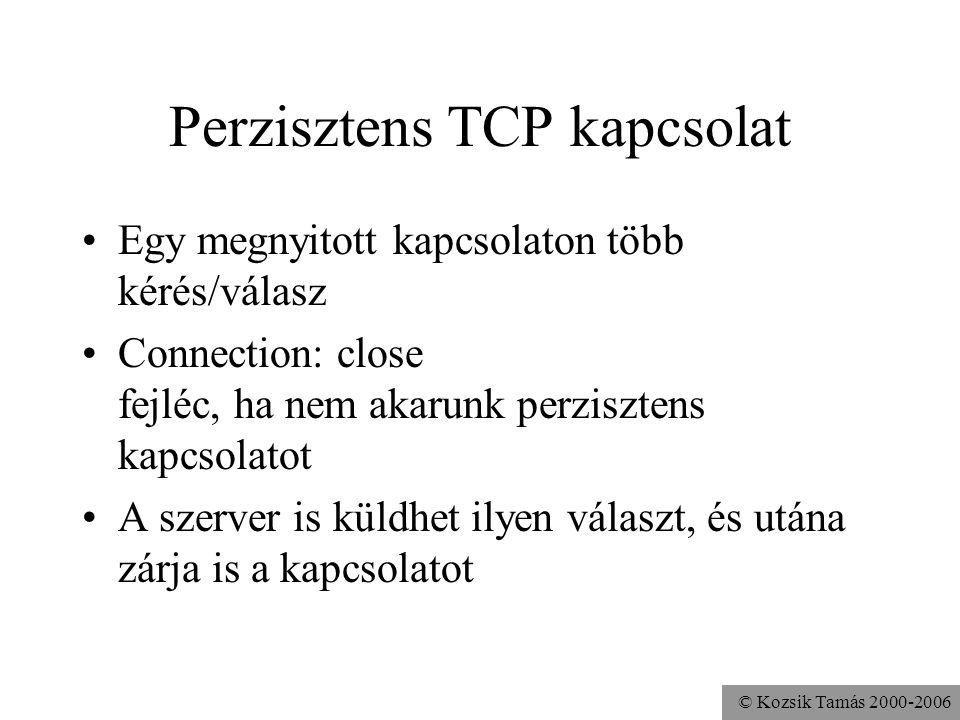 Perzisztens TCP kapcsolat