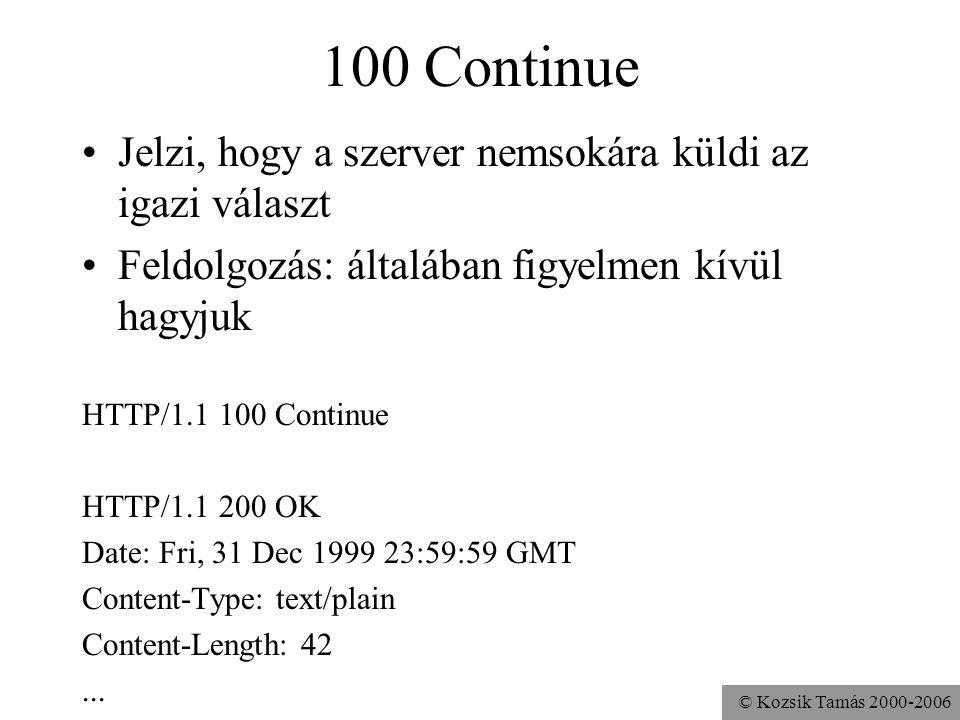 100 Continue Jelzi, hogy a szerver nemsokára küldi az igazi választ