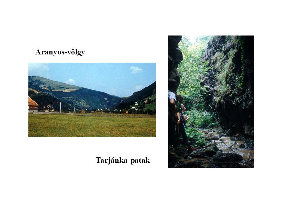 Aranyos-völgy Tarjánka-patak