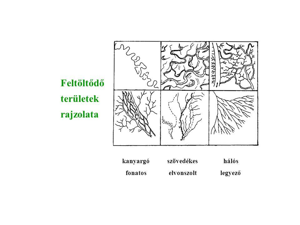 Feltöltődő területek rajzolata kanyargó szövedékes hálós
