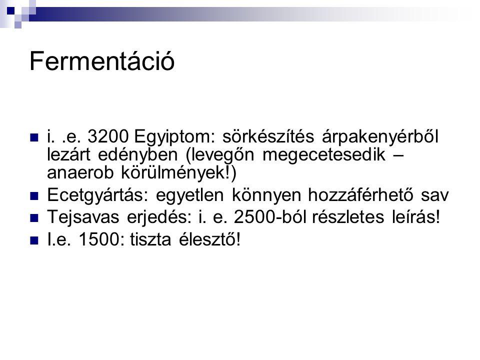 Fermentáció i. .e. 3200 Egyiptom: sörkészítés árpakenyérből lezárt edényben (levegőn megecetesedik – anaerob körülmények!)