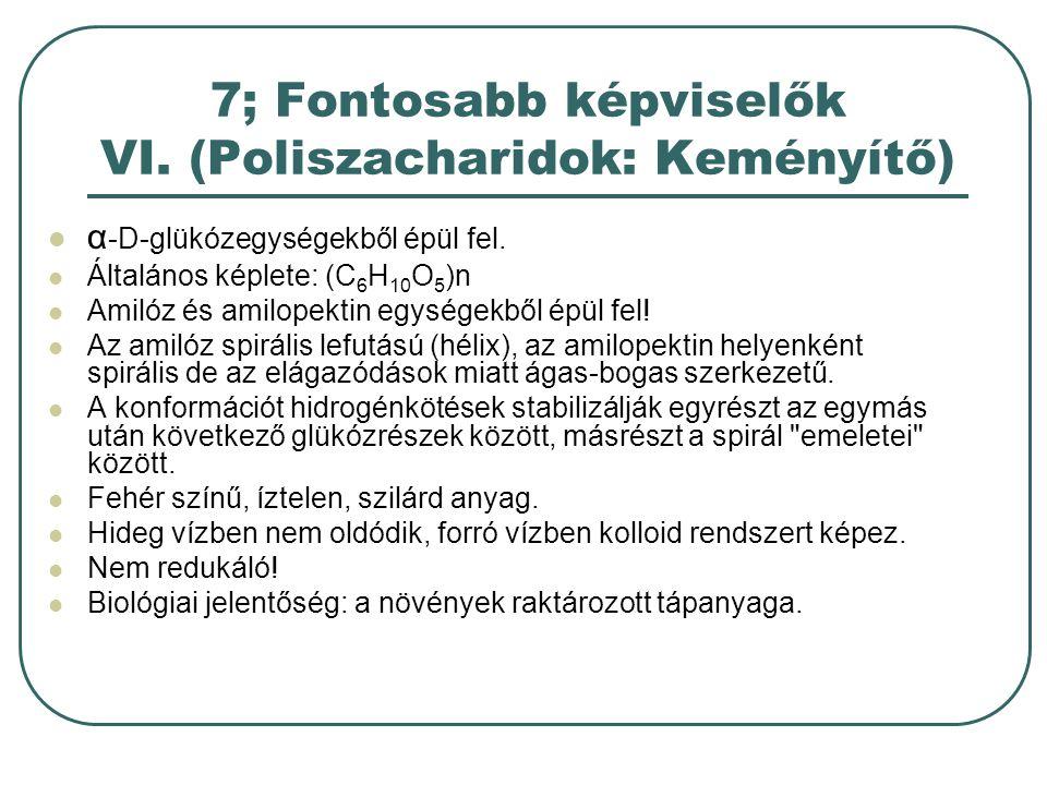 7; Fontosabb képviselők VI. (Poliszacharidok: Keményítő)