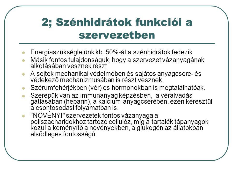 2; Szénhidrátok funkciói a szervezetben