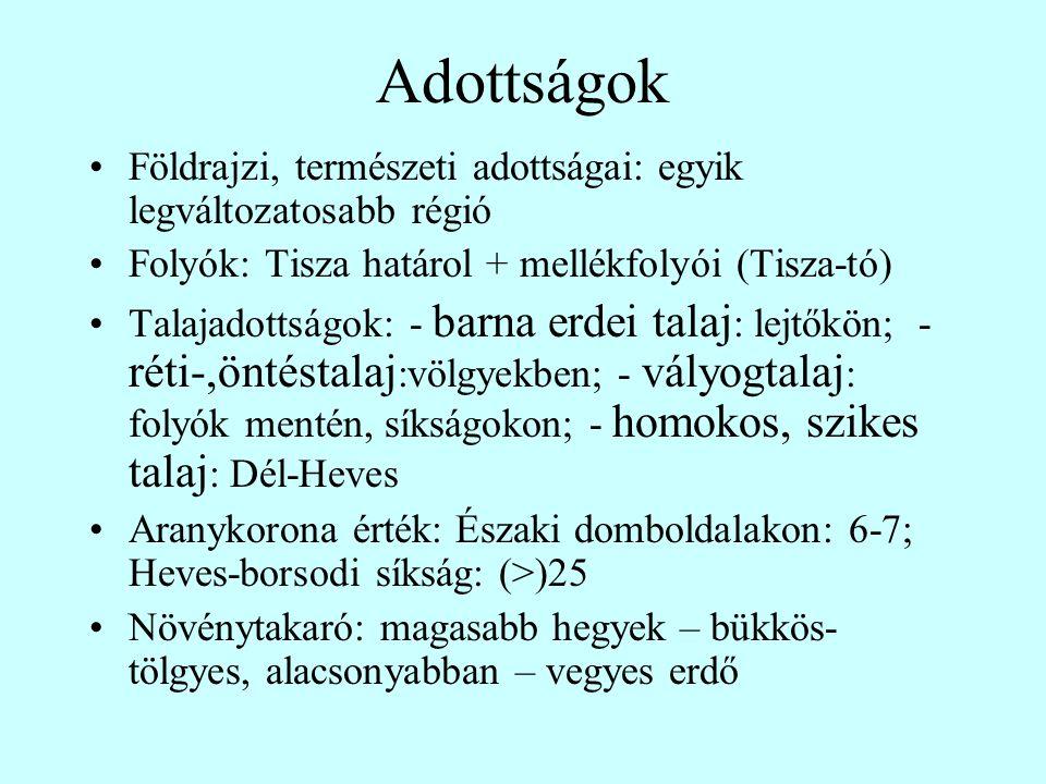 Adottságok Földrajzi, természeti adottságai: egyik legváltozatosabb régió. Folyók: Tisza határol + mellékfolyói (Tisza-tó)