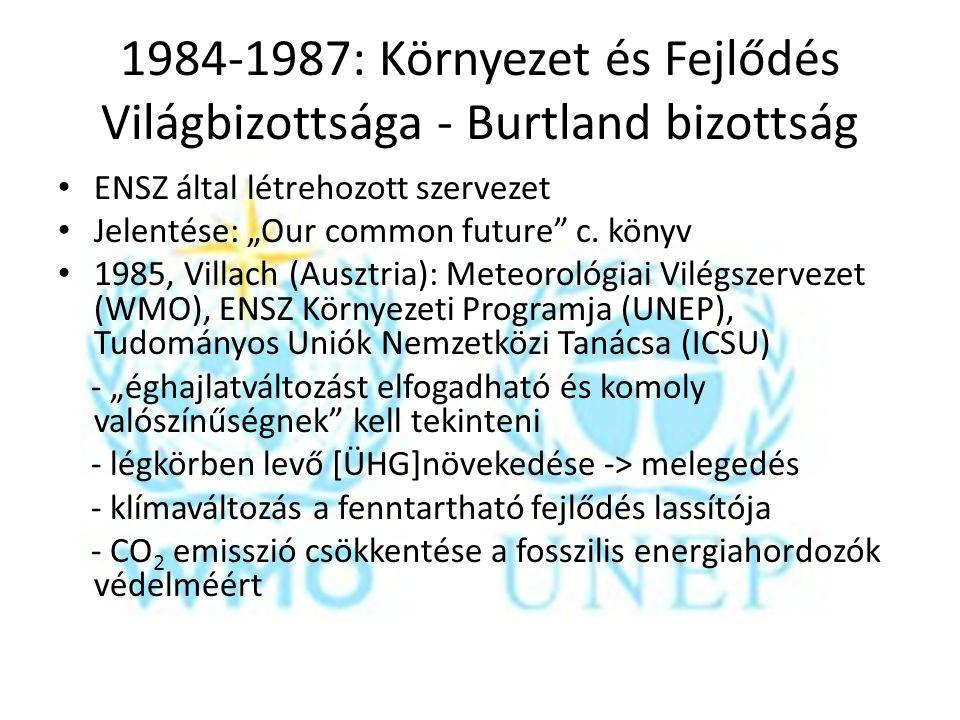 1984-1987: Környezet és Fejlődés Világbizottsága - Burtland bizottság