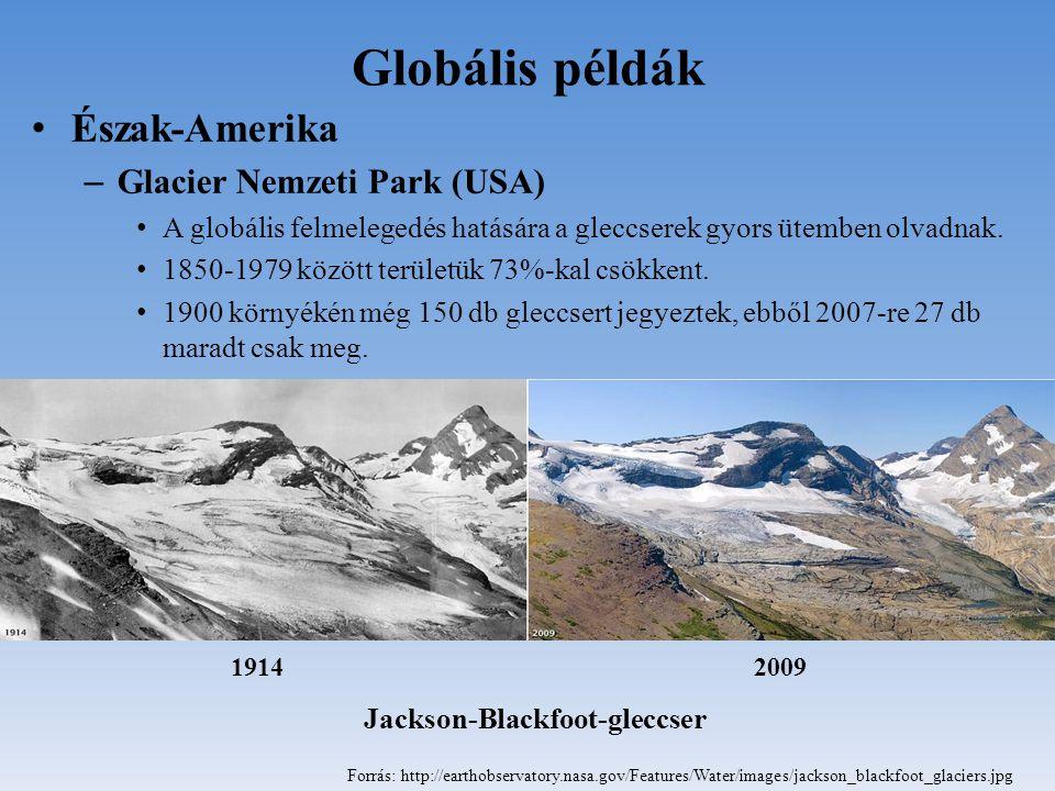 Globális példák Észak-Amerika Glacier Nemzeti Park (USA)