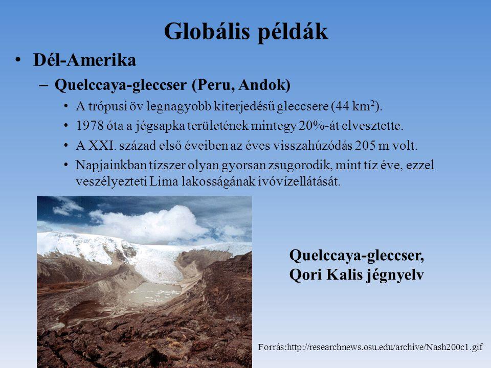 Globális példák Dél-Amerika Quelccaya-gleccser (Peru, Andok)
