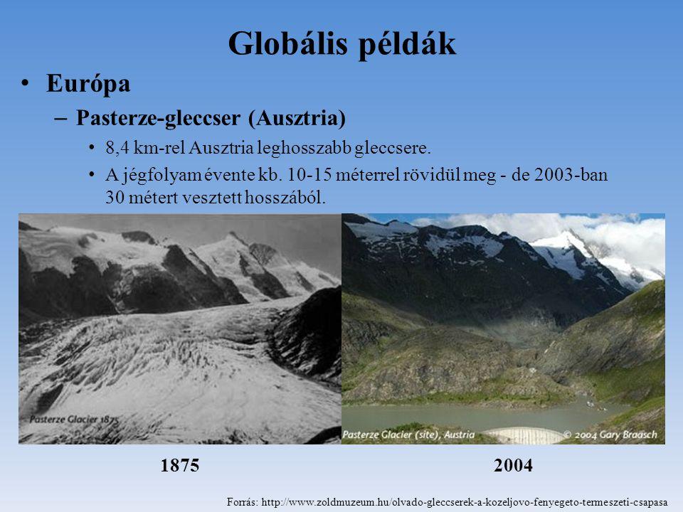 Globális példák Európa Pasterze-gleccser (Ausztria)
