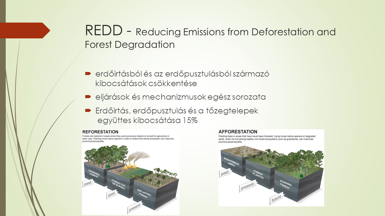 REDD - Reducing Emissions from Deforestation and Forest Degradation