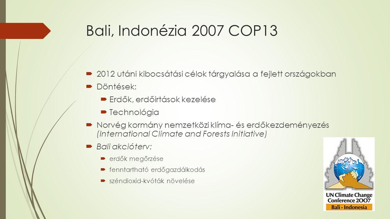 Bali, Indonézia 2007 COP13 2012 utáni kibocsátási célok tárgyalása a fejlett országokban. Döntések: