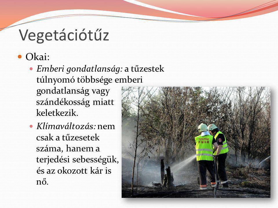 Vegetációtűz Okai: Emberi gondatlanság: a tűzestek túlnyomó többsége emberi gondatlanság vagy. szándékosság miatt.