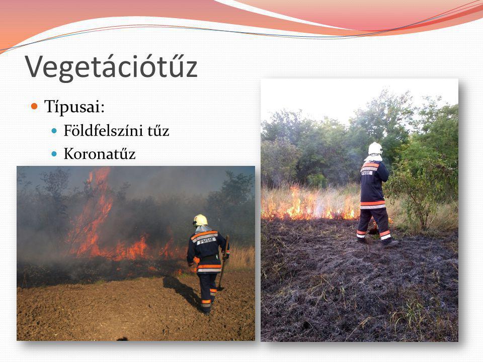 Vegetációtűz Típusai: Földfelszíni tűz Koronatűz