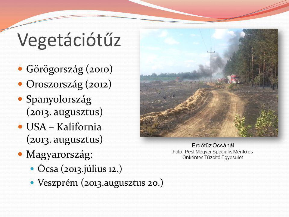 Fotó: Pest Megyei Speciális Mentő és Önkéntes Tűzoltó Egyesület