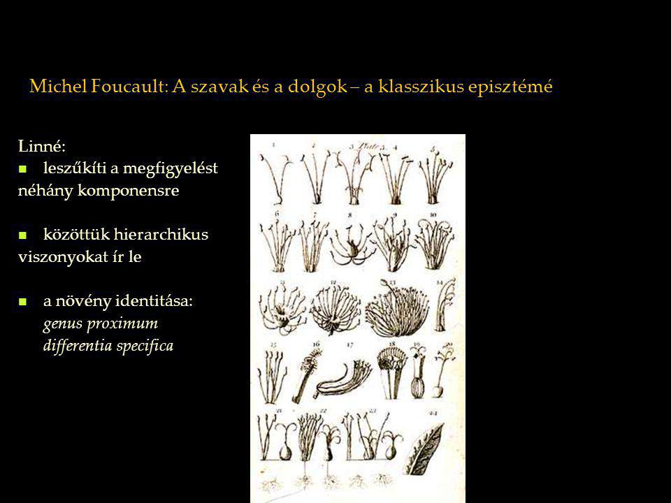 Michel Foucault: A szavak és a dolgok – a klasszikus episztémé