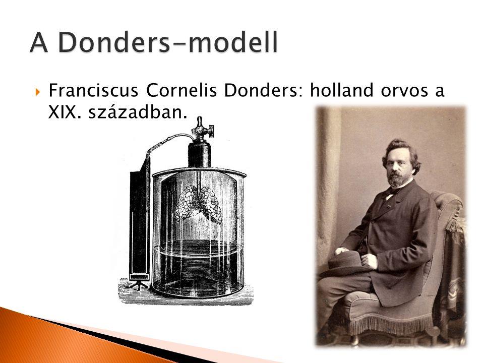 A Donders-modell Franciscus Cornelis Donders: holland orvos a XIX. században.