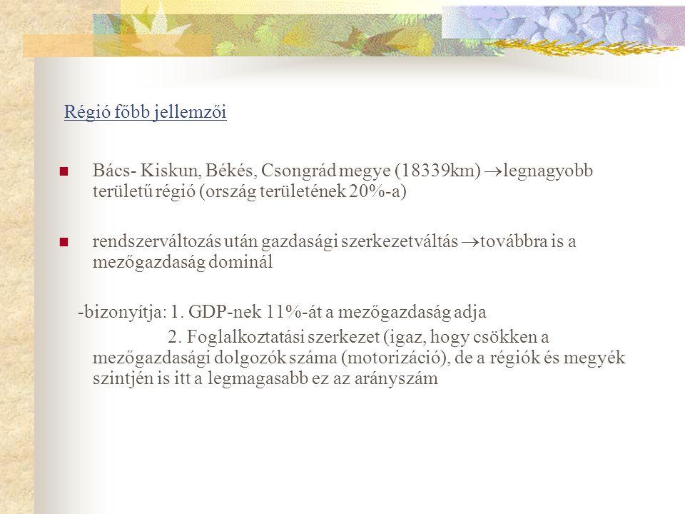 Régió főbb jellemzői Bács- Kiskun, Békés, Csongrád megye (18339km) legnagyobb területű régió (ország területének 20%-a)