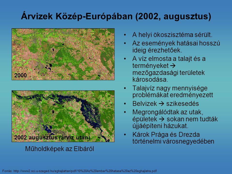 Árvizek Közép-Európában (2002, augusztus)